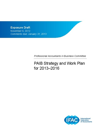 Professional Accountants in Business Strategy and Work Plan