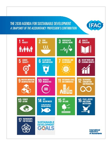 The 2030 Agenda for Sustainable Development | IFAC